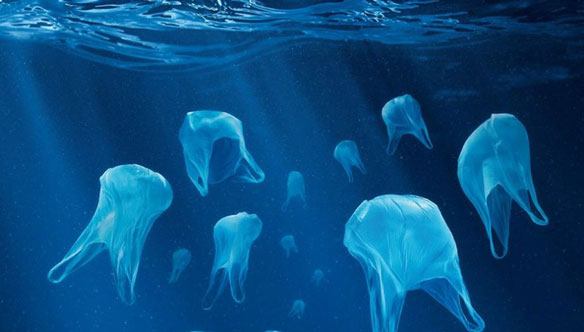 Documentary Screening: Time to Turn the Tide on Plastic in Hong Kong